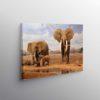 Tablou Elephant Family