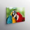 Tablou Parrots in love